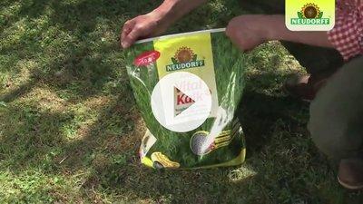 Rasen kalen - oder nicht?