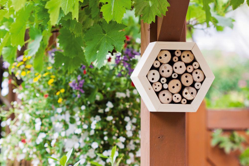 Neudorff: Insekten helfen